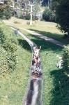 3. Ausflug nach Windischgarten (1994)_4
